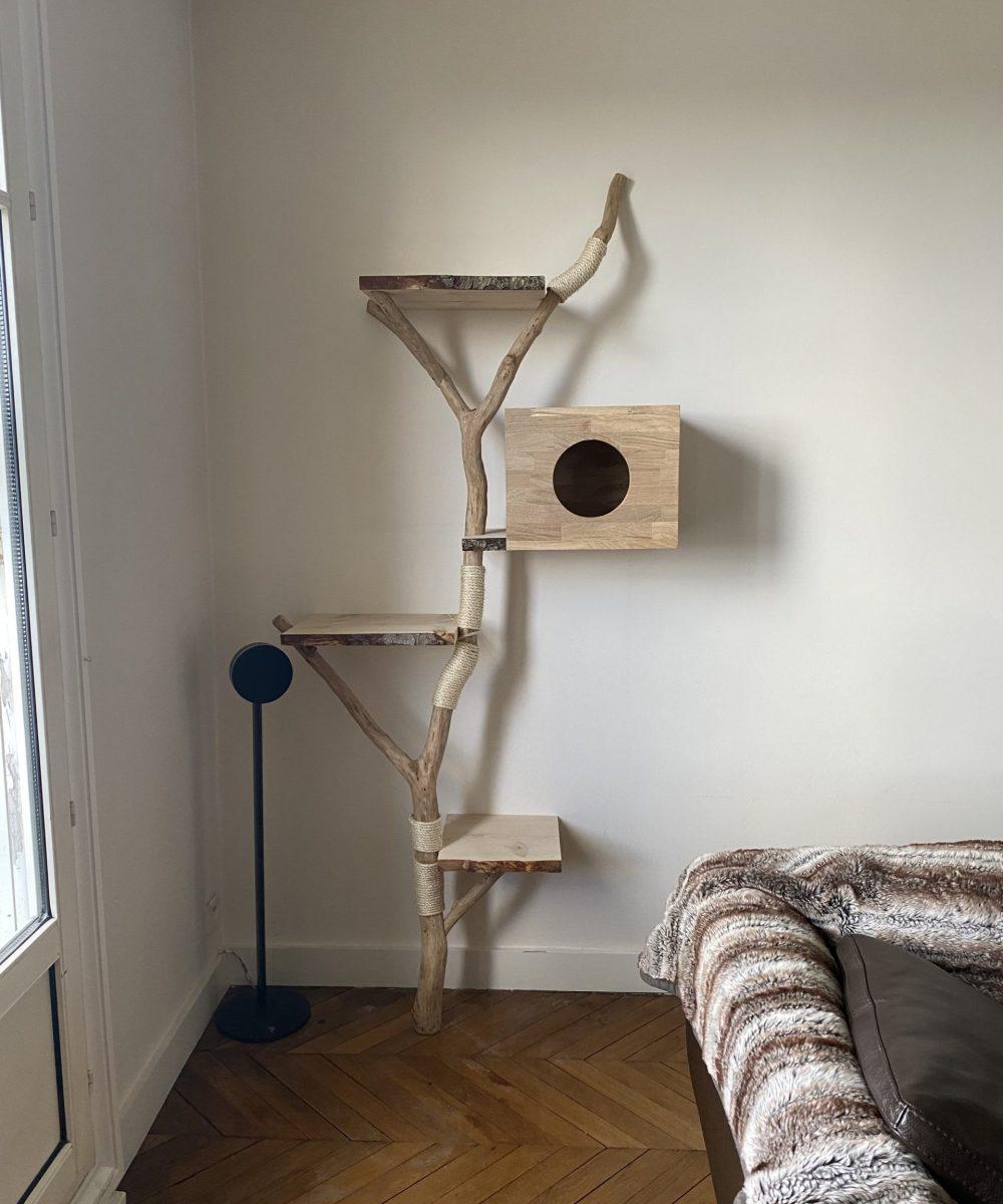 Mon arbre à chat Peinture Rio 6